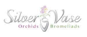 Silver Vase Logo