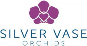 SilverVase-Logo-MainLogo-Color-1