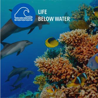 SDG Life below water