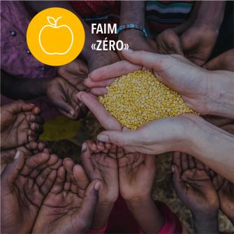 SDGs faim zero