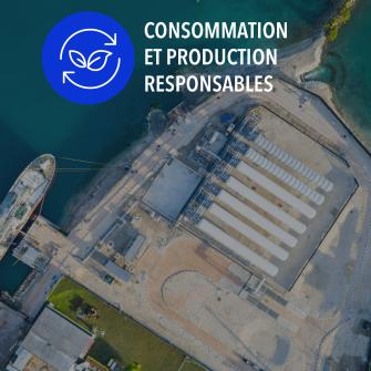 SDGs consommation et production responsables