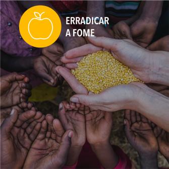 SDGs erradicar a fome