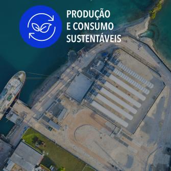 SDGs producao e consumo sustentaveis