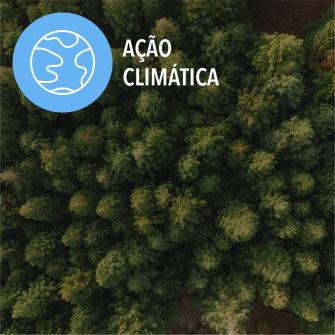 SDGs acao climatica