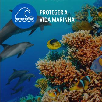 SDGs proteger a vida marinha