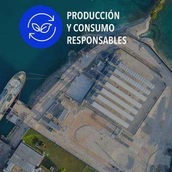 SDGs produccion y consumo  responsables
