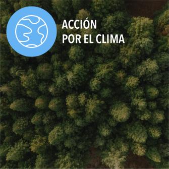 SDGs accion por el clima