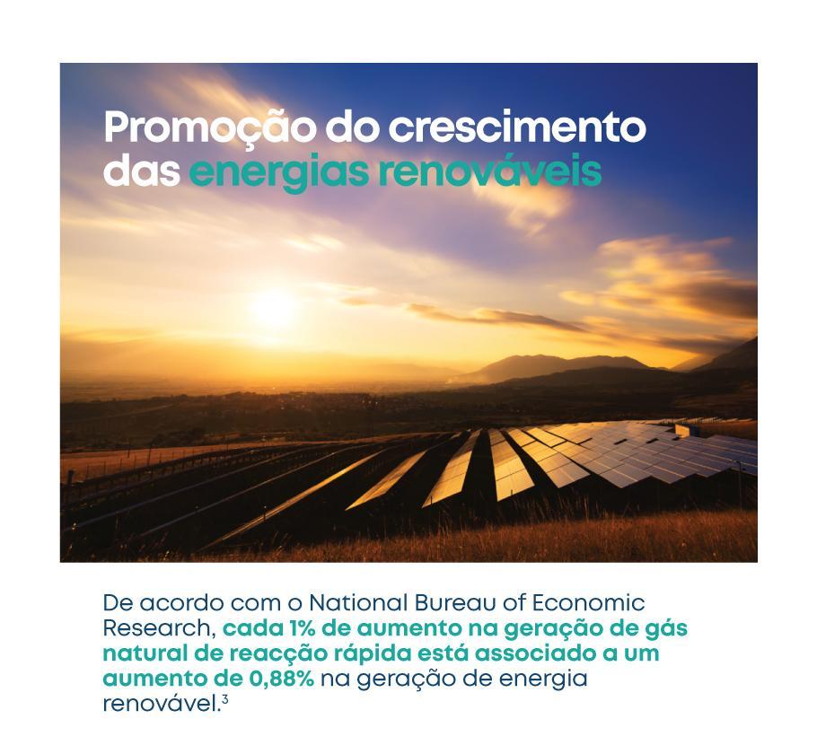 LNG-Renewables_PortEU
