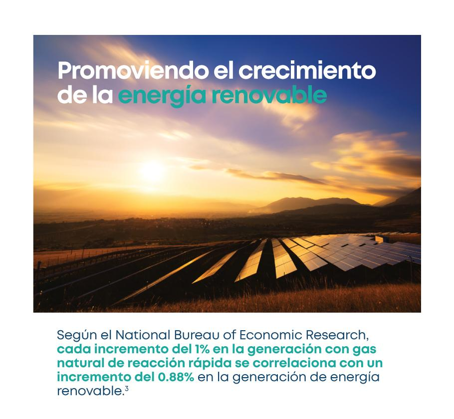 LNG-Renewables_SpanishPR