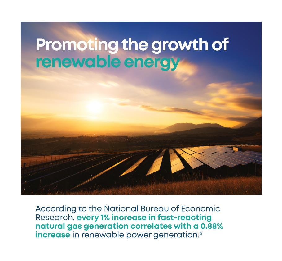LNG-Renewables_english
